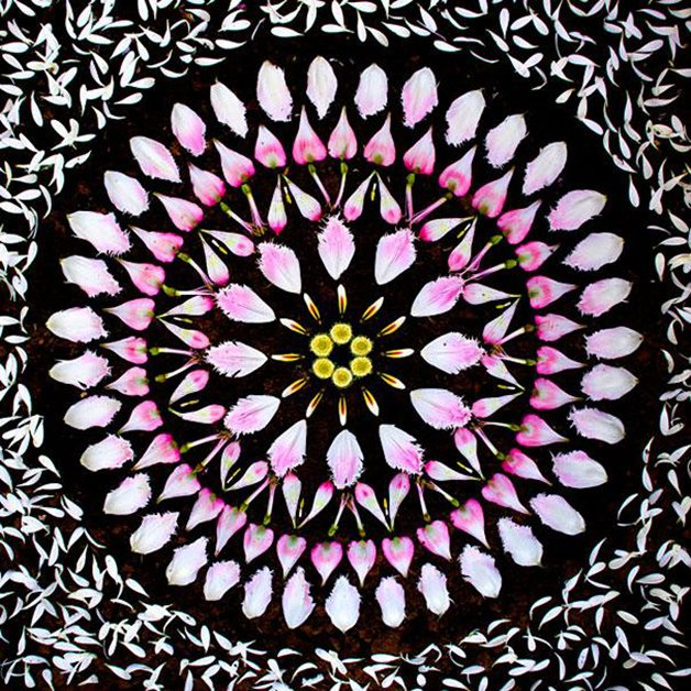 danmala-flower-mandala-kathy-klein-3