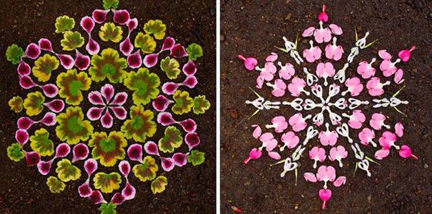 danmala-flower-mandala-kathy-klein-39
