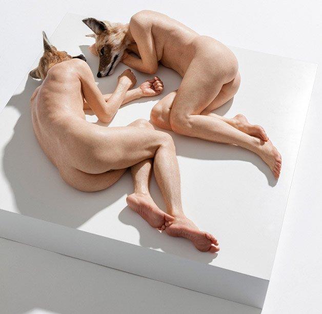 Sam Jinks : Unsettled Dogs 2012 / Sullivan + Strumpf