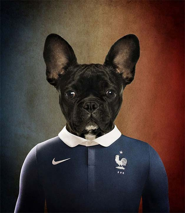Dogs-of-World-Cup-Brazil-20141-640x736