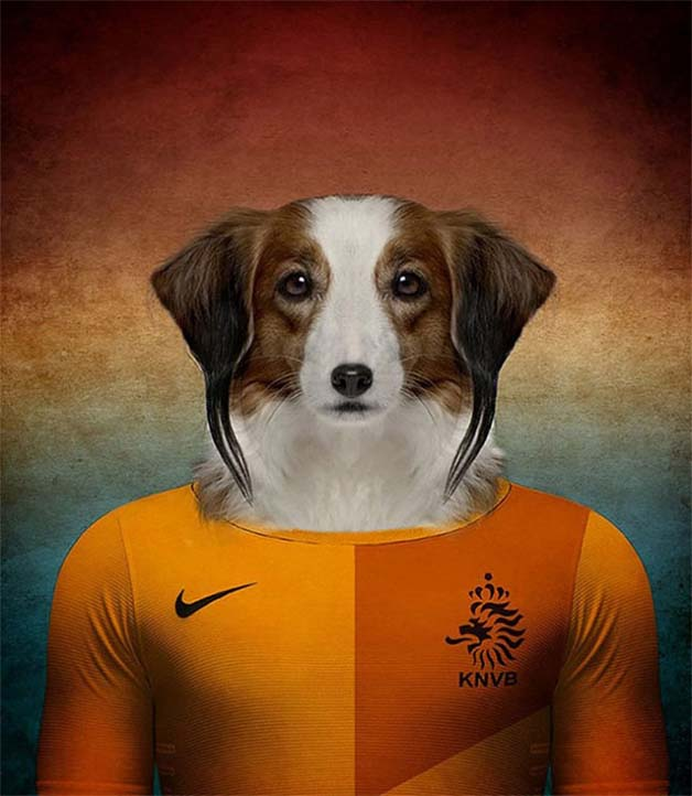 Dogs-of-World-Cup-Brazil-201410-640x736