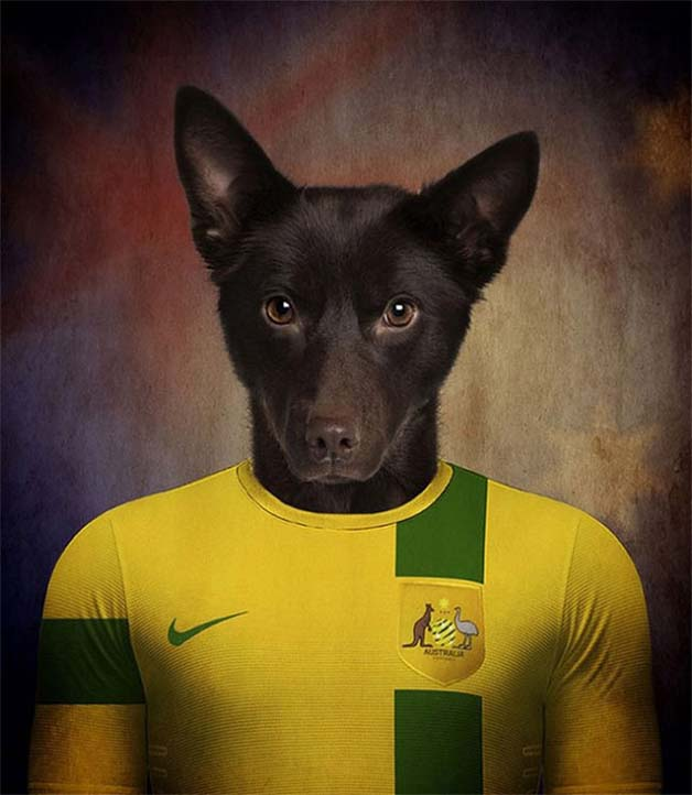 Dogs-of-World-Cup-Brazil-201411-640x736