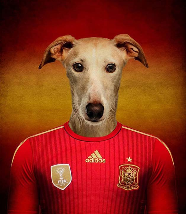 Dogs-of-World-Cup-Brazil-201413-640x736