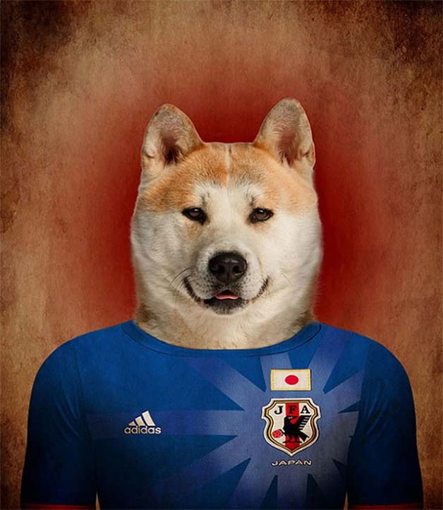 Dogs-of-World-Cup-Brazil-20141a-640x736