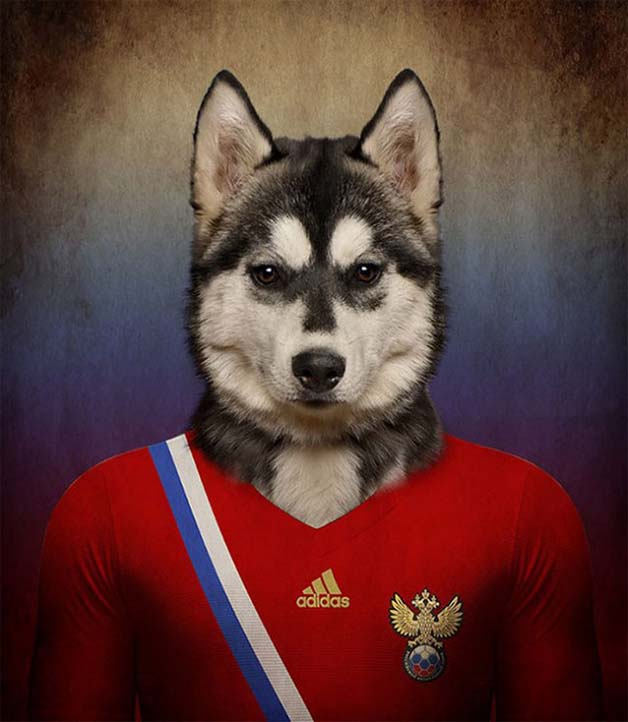 Dogs-of-World-Cup-Brazil-20145-640x736