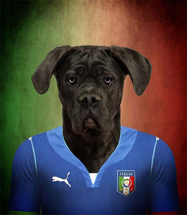 Dogs-of-World-Cup-Brazil-20146-640x736