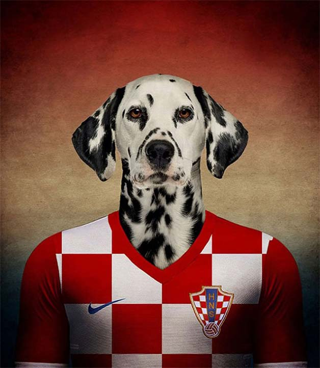 Dogs-of-World-Cup-Brazil-20147-640x736