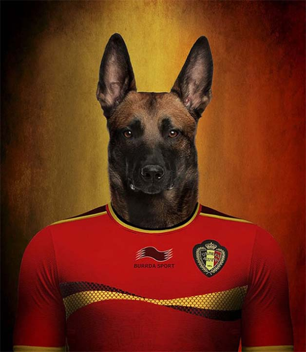Dogs-of-World-Cup-Brazil-20149-640x736