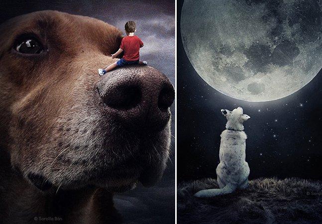 Artista coloca cães em cenários surreais e lança campanha pela adoção