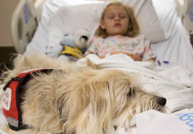 Menina de 7 anos ganha permissão de fazer cirurgia acompanhada de seu cãozinho