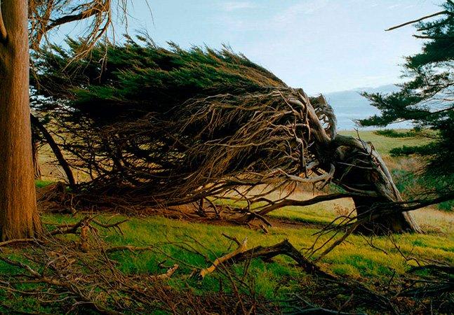 Se você não sabe para onde ir, o vento vai te levar para qualquer direção