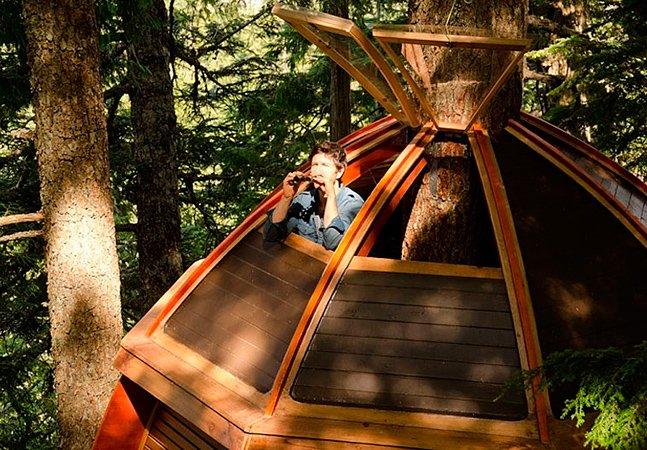 """Depois de ser despedido do seu emprego, ele decidiu construir uma incrível casa na árvore """"escondida"""" na floresta"""