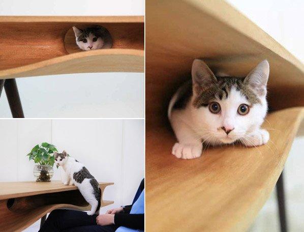 Seu gato não te deixa trabalhar em paz? Essa mesa inovadora vai resolver os seus problemas
