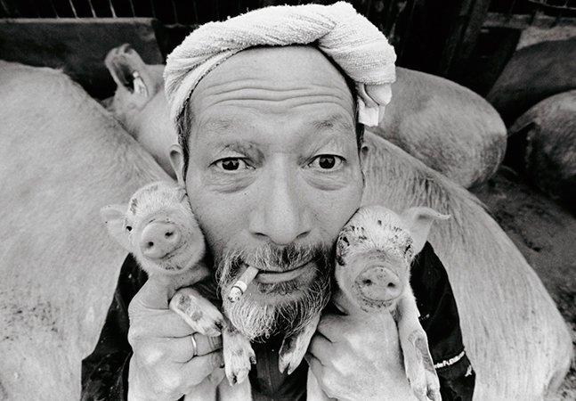 Fotógrafo mostra a amizade de um homem e seus 1200 porcos de estimação