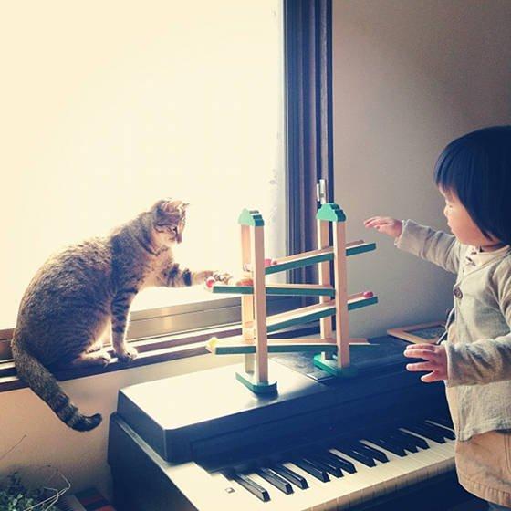 O gatinho Toco e sua irmãzinha humana
