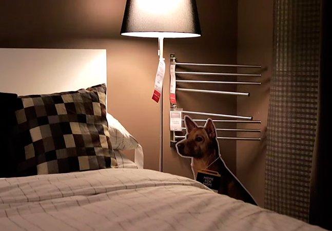 Ikea usa a criatividade para ajudar a encontrar um novo lar para cães