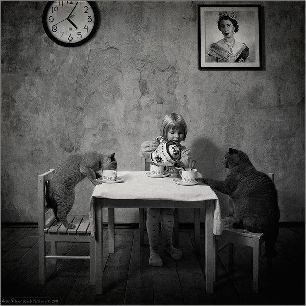 Menina e gato são melhores amigos