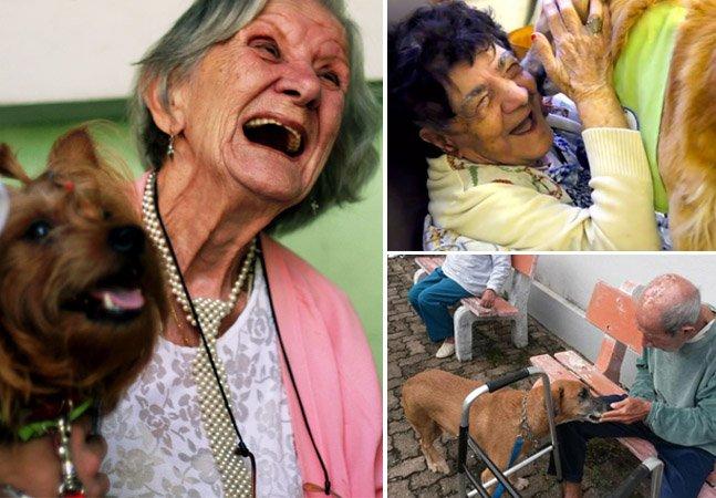 Projeto utiliza cães de rua para ajudar na terapia de idosos esquecidos em asilos