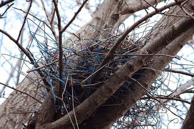crow-nest-hanger-42