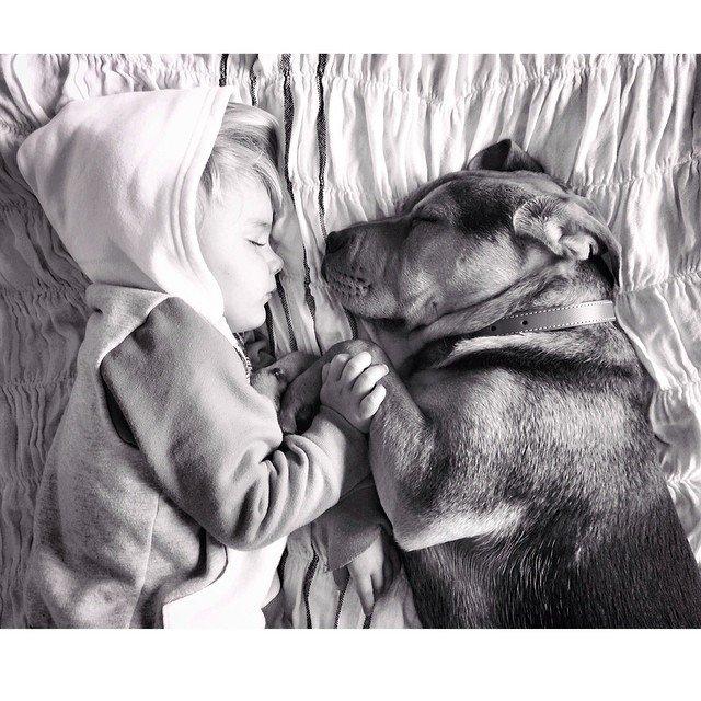 Os melhores amigos da soneca cresceram