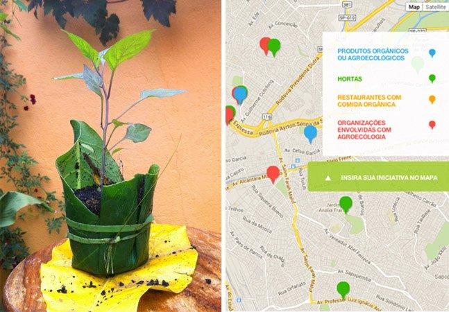 Site facilita a vida de quem quer comprar alimentos orgânicos em São Paulo