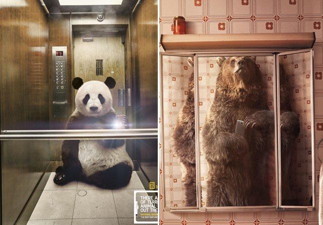 Agência brasileira cria campanha com animais selvagens aderindo à moda dos selfies