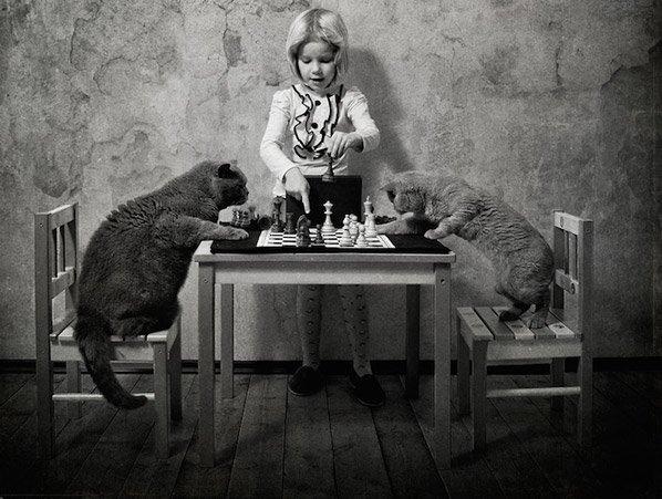 Pai fotógrafo retrata de forma sensível a profunda amizade da filha com seus dois gatos