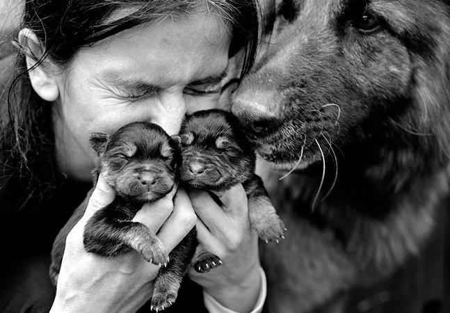 Pai registra a rotina da família com seus animais de estimação em série de fotos encantadora