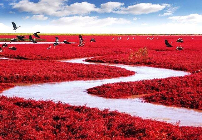 """Acredite se puder: essa """"praia vermelha"""" existe de verdade"""
