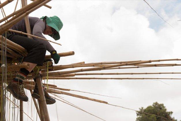 Big Bambú