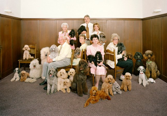 Série de fotos reúne grupos de pessoas com os mesmos hobbies e interesses