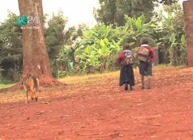 Cachorra cuida de crianças no Quênia