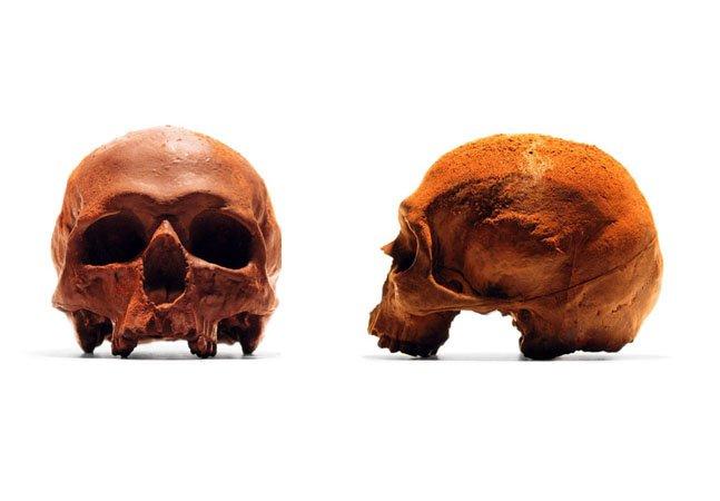 Marca cria crânios ultrarrealistas e em  tamanho real feitos de chocolate