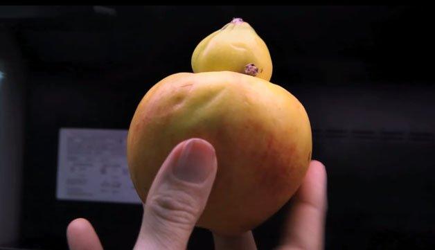"""Mercado faz campanha com frutas """"feias"""""""