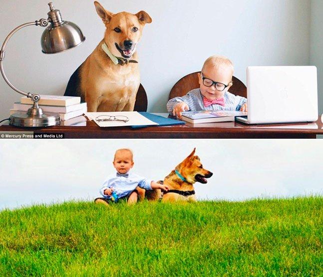 Cão adotado e bebê se tornam amigos inseparáveis e fazem sucesso na internet