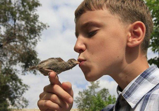 Criança salva pardal abandonado e os dois formam dupla inseparável