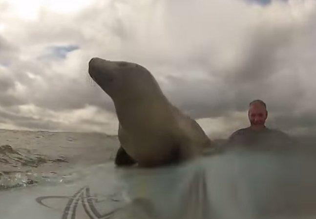 Vídeo feito com GoPro capta uma aproximação que esses surfistas jamais poderiam imaginar