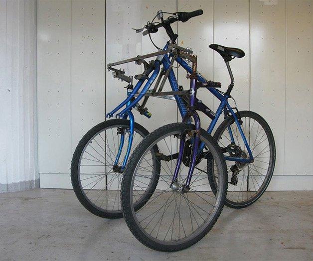 bikessauro36