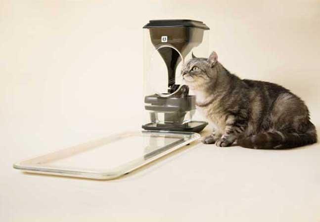 O comedouro para gato mais inteligente dos últimos tempos