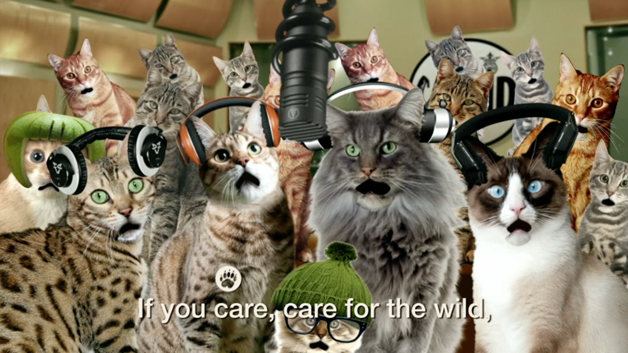 care-for-the-wild1