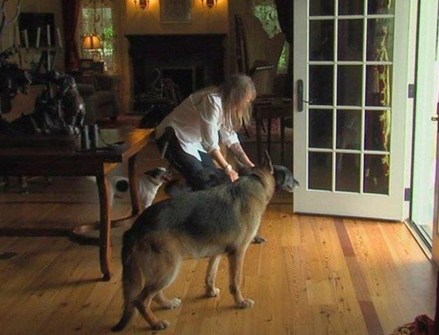 lady-dog2