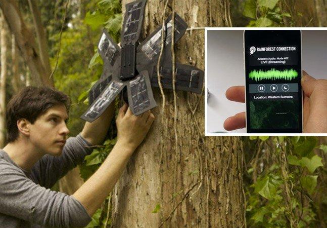 Startup recicla celulares antigos para salvar florestas do desmatamento