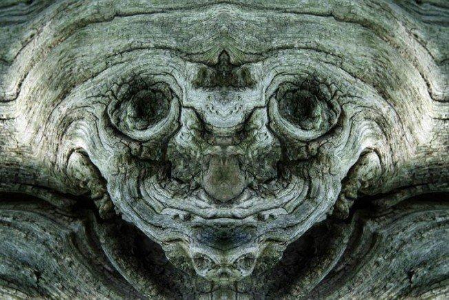 Dream-Creatures-Elido-Turco-3-652x435