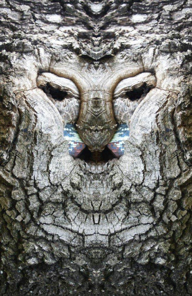 Dream-Creatures-Elido-Turco-4-652x1004