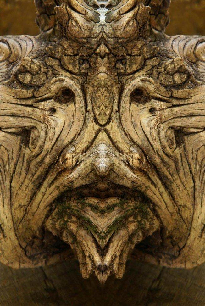 Dream-Creatures-Elido-Turco-7-652x973