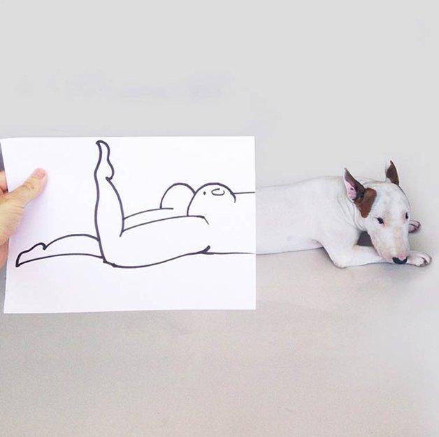 bull-terrier-ilustracoes15