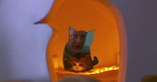 cathouse4