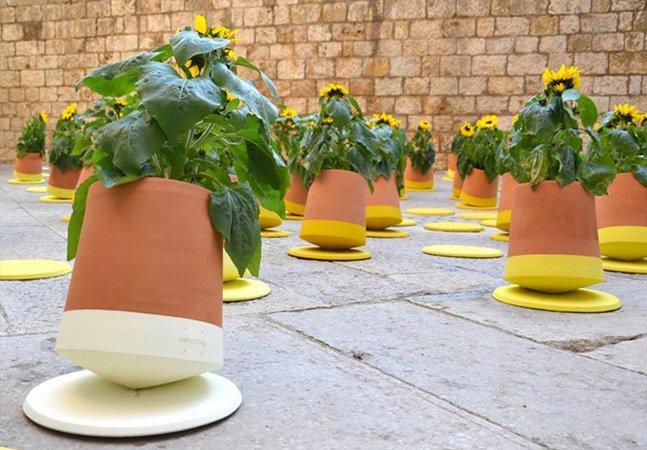 Designers criam vasos inteligentes que se movimentam sozinhos em busca de luz solar