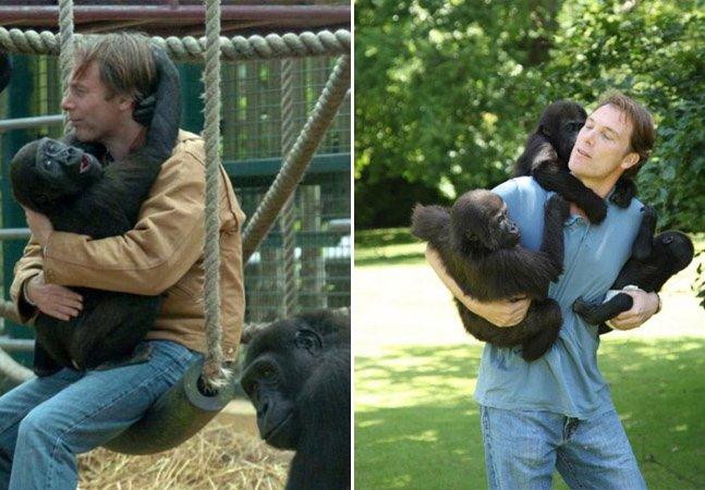 Conheça o milionário que dedicou sua vida a cuidar de gorilas e enviá-los de volta à natureza