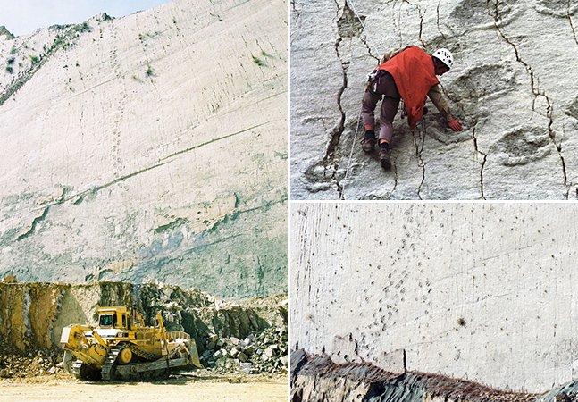 Paredão histórico na Bolívia tem mais de 5 mil pegadas de 8 espécies diferentes de dinossauros